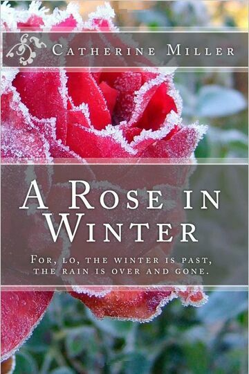 A Rose in Winter